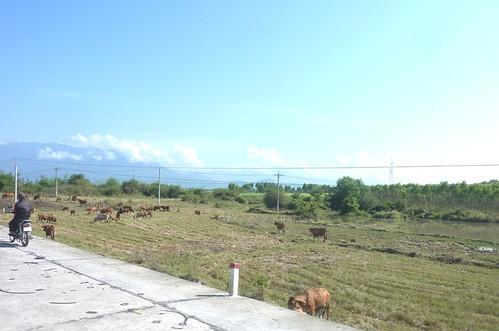 V 12-Route Nha Trang-BMT (27)