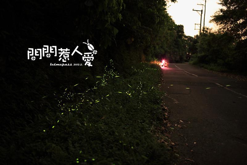 閃閃惹人愛_02