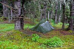 Tarp Camps: 3 of 3
