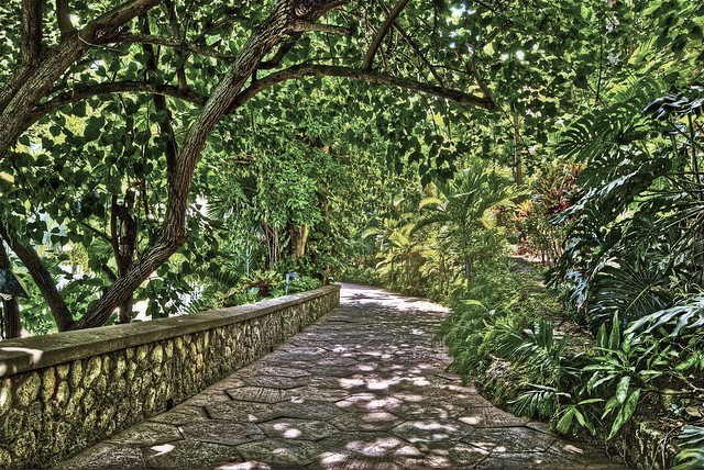 Path by Mineral Pool at Couples Sans Souci - HDR