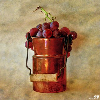 Grapes & Copper