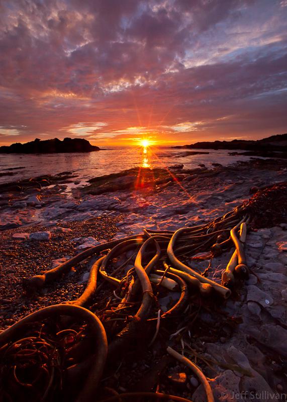 Weston Cove Sunset
