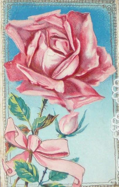 a favorite postcard
