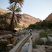 Small photo of Wadi Bani Khalid