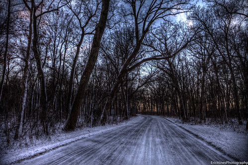 road trees winter canon hdr photomatix canonef24105mmf4lisusm 5dmkii
