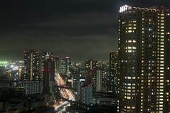 2010-2011 Tokyo