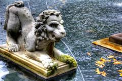 Regent Fall 2010 HDR 14