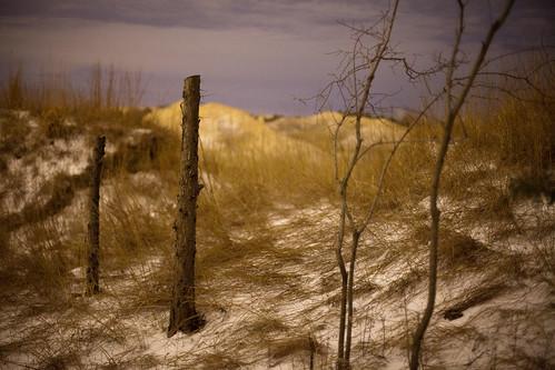 landscape iowa loess grewe
