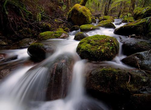 wet water rain rock creek river waterfall washington moss stream adventure granite mossy granitefalls triplefalls