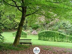Arboretum de la Sédelle - Creuse - Crozant