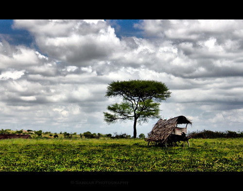 india canon farm hut 1855 karnataka hdr wayanad eos550d memoriesofsolitude arunsankar gundapet
