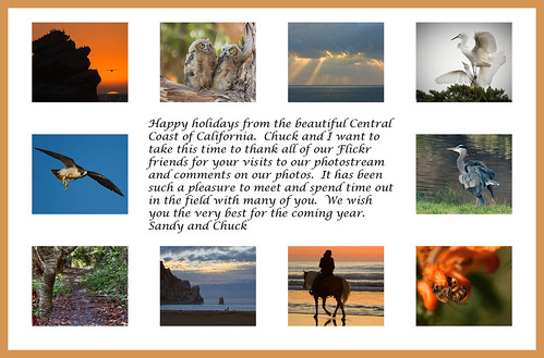 Happy Holidays from the Central Coast