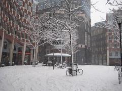 sneeuw/ snow/ neige