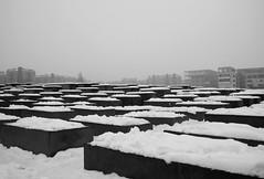 Memorial to the Murdered Jews of Europe - Denkmal für die ermordeten Juden Europas