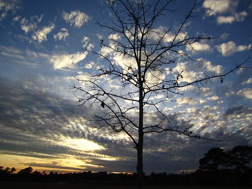 sunset usa lake woodlands texas