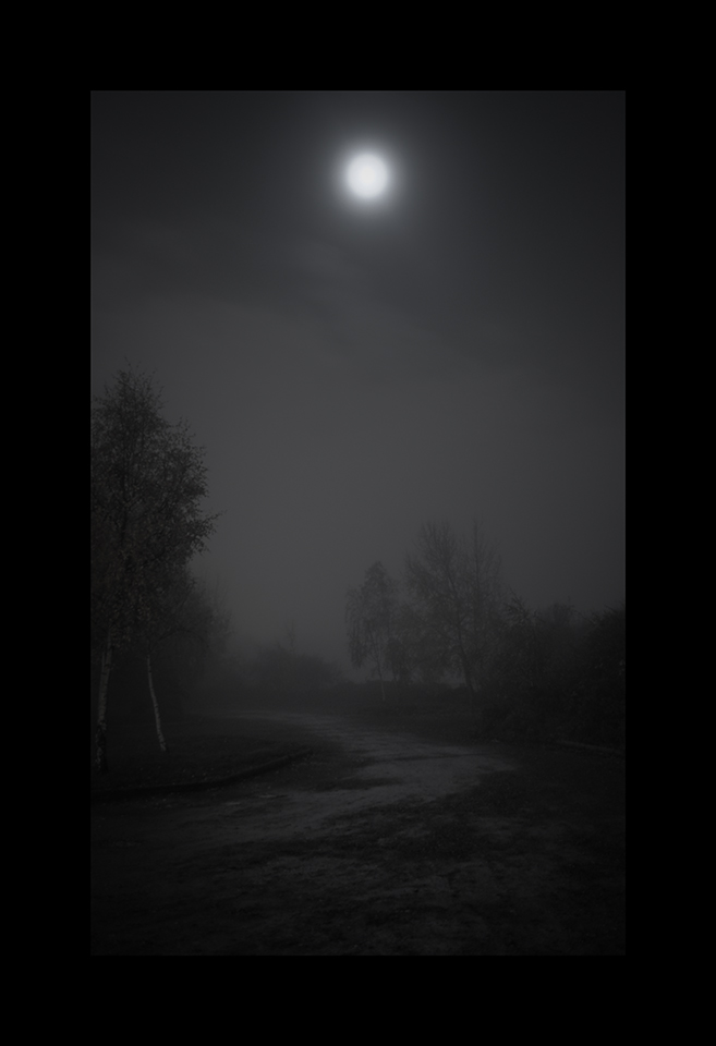 Information about ID594: Night Fog by Nicholas M Vivian