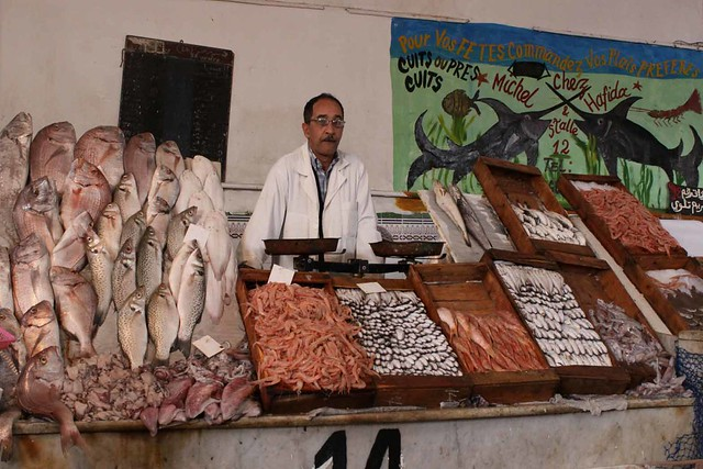 casablanca fish market fischmarkt flickr photo sharing