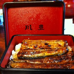meal(1.0), lunch(1.0), unadon(1.0), unagi(1.0), fish(1.0), food(1.0), dish(1.0), cuisine(1.0),