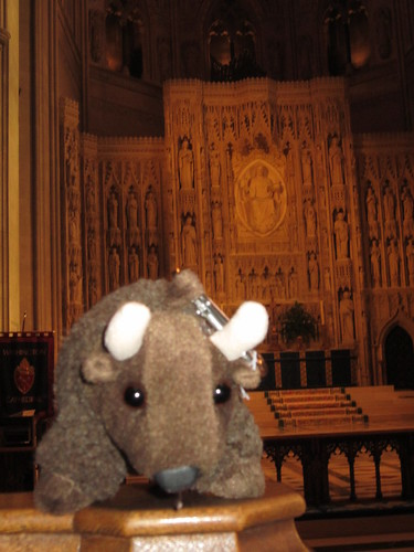Buddy at the National Cathedral.