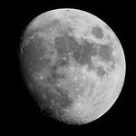 night Moon BW II