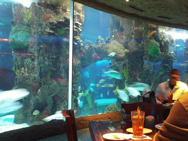 Aquarium Restaurant Opry Mills