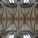 wells cathedral, nave vaults