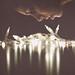 illuminate me by PaytonGuerra