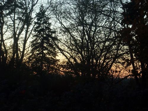 november sunset 2010 nov12 november12 project365