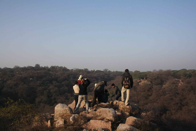 City Secret – Mangarbani, near Chattarpur