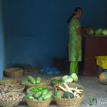 Simple Vegetable Shop Near Pashupatinath - Kathmandu, Nepal