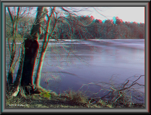 brian wallace brianwallace 3d stereo stereoscopy stereoscopic stereographic stereopicture stereoimage christmaseve 122410 depth anaglyph frame border abbottspond water nature outdoors outside pond tree ice frozen