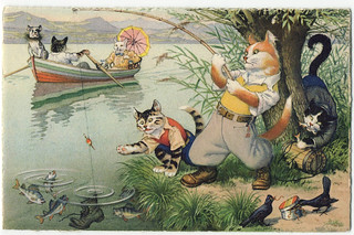 Mainzer cats  -  fishing