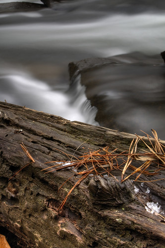 longexposure snow water nc log rocks northcarolina littleriver dupontstateforest transylvaniacounty pineneddles knotonalog davidhopkinsphotography ncpedia