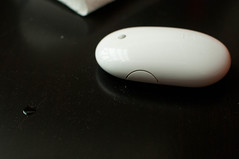 hand(0.0), macro photography(0.0), electronic device(1.0), white(1.0), close-up(1.0), mouse(1.0), black(1.0),
