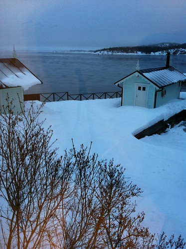 Vinter på landet 16/1 2011