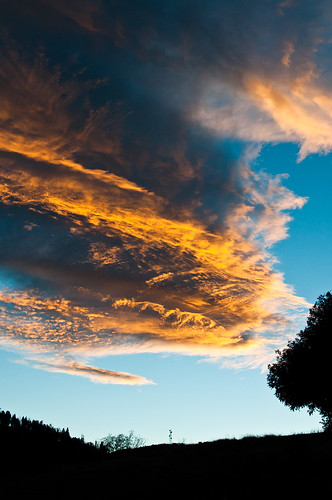trees sunset mountains silhouette clouds