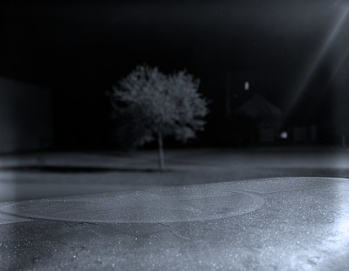 tree film night airplane star blackwhite dof military wing 4x5 airforce viewcamera