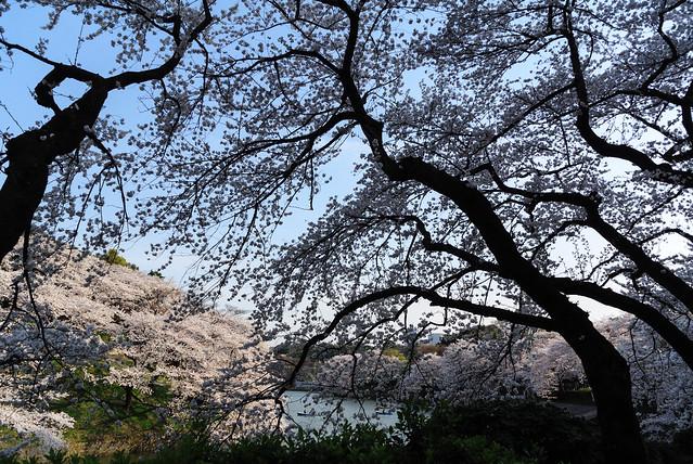 2014-04-01_154447_Lr