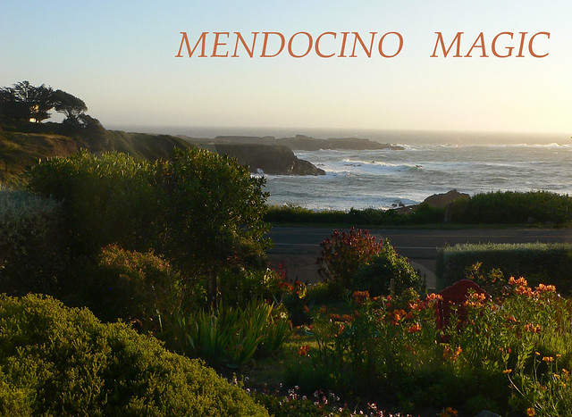 Mendocino Magic, Panasonic DMC-FZ3