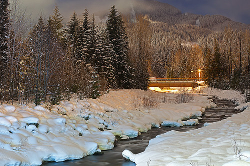 longexposure trees winter light sky mountain snow canada tree night creek whistler britishcolumbia freshsnow fitzsimmonscreek canoneos5dmarkii fitzsimmomstrail