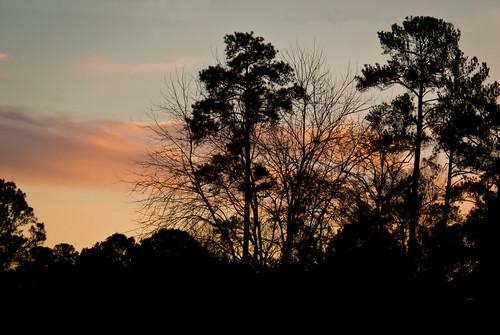 sunset sky nature silhouette clouds georgia albany doughertycounty thesussman sonyalphadslra200