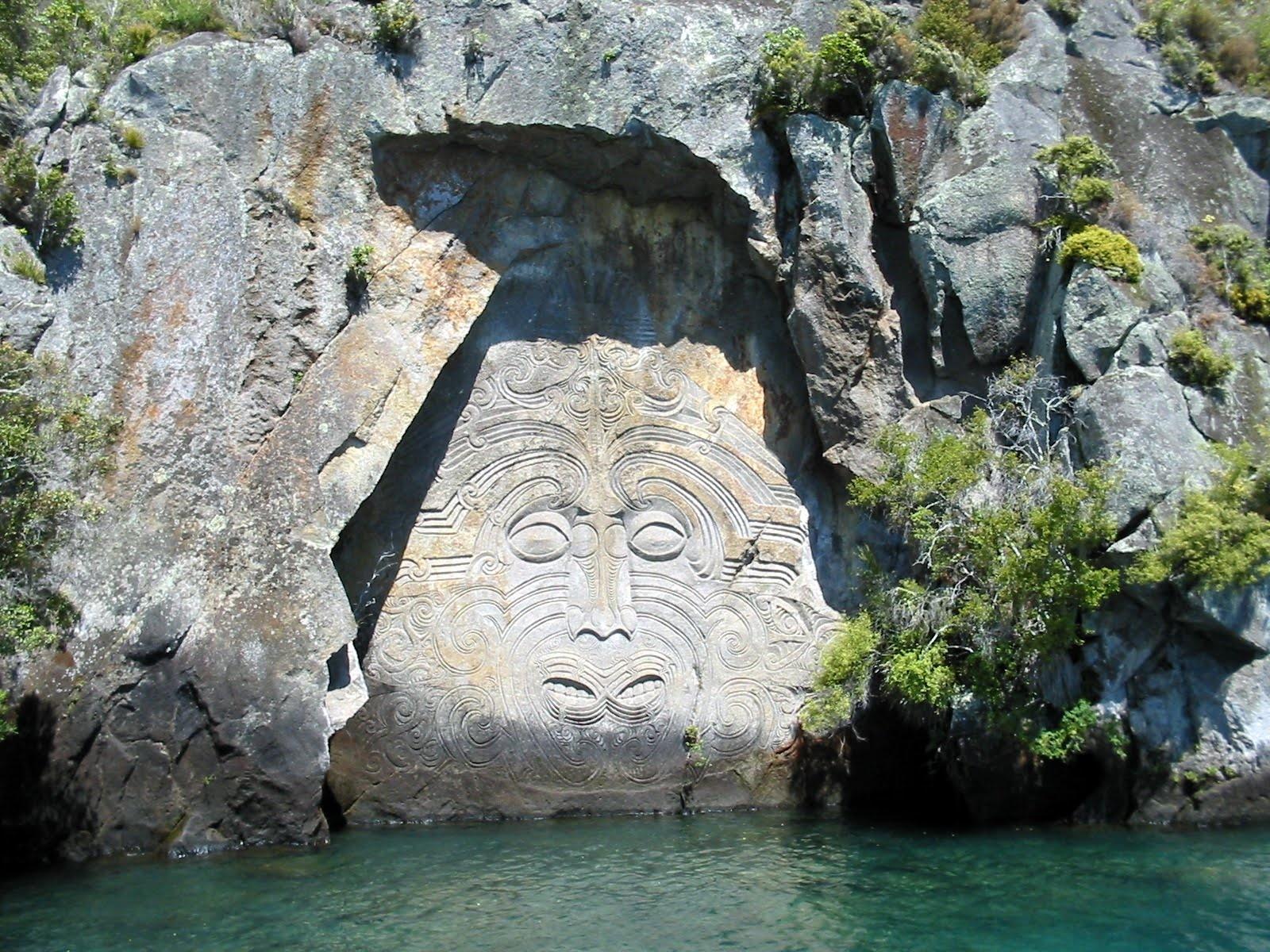 Kiwi the beauty of new zealand