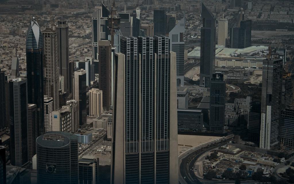 Birdeye Dubai
