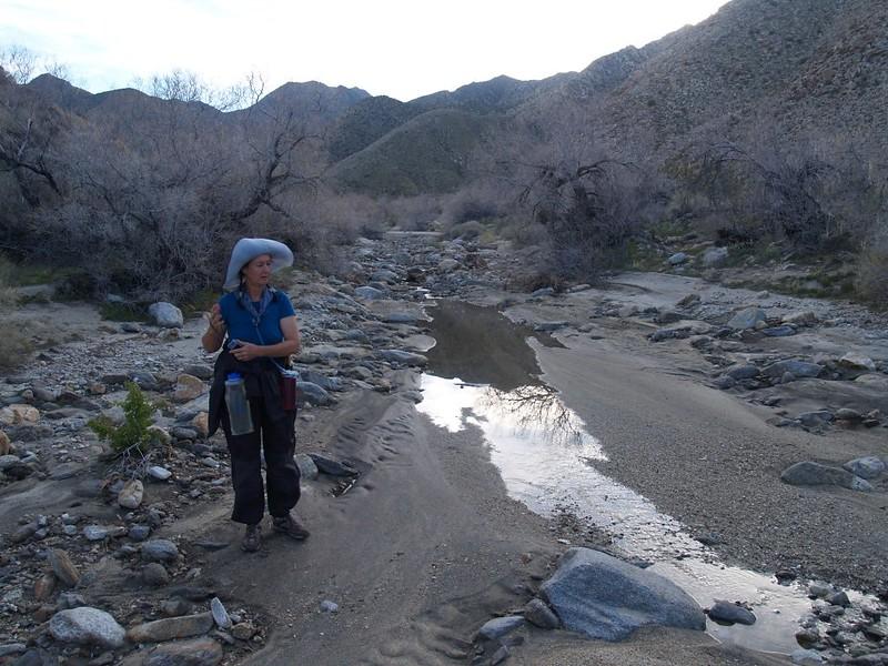 Heading toward camp, Cougar Creek finally sinks into the sandy wash