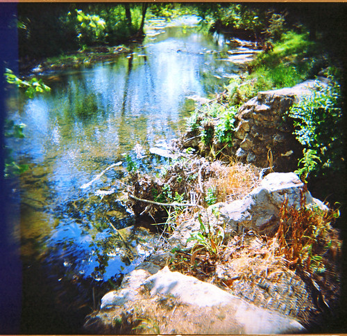 rural creek mediumformat georgia holga spring stream lightleaks 120mm holga120sf kodakportra160nc