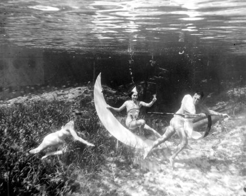 Underwater New Year's at Rainbow Springs: Rainbow Springs, Florida