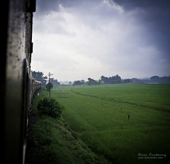 Rainy Train Ride