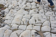 stone wall(0.0), wall(0.0), soil(0.0), rubble(0.0), flagstone(0.0), cobblestone(0.0), road surface(0.0), flooring(0.0), pebble(1.0), rock(1.0),
