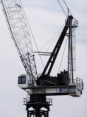 Cranes in Australia
