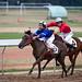 Vietnam - Saigon Horse Racing
